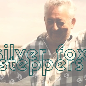 Silver Fox Steppers for Nicholas J. Barker